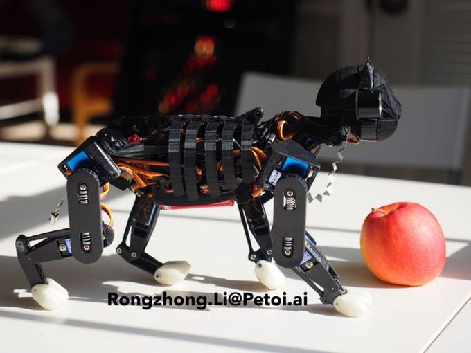 Un robot chat OpenSource